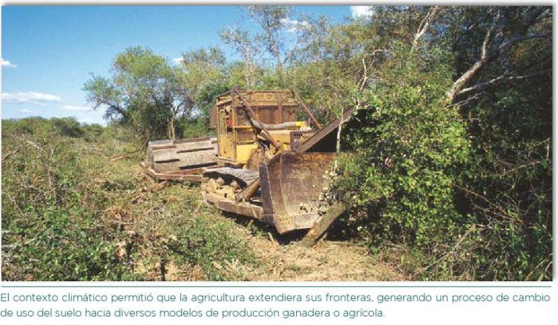 revistacrea1