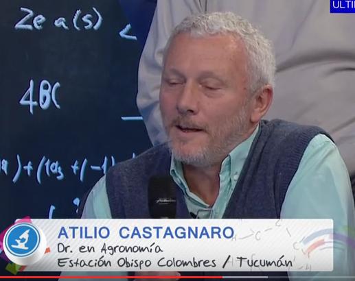 catagnaro