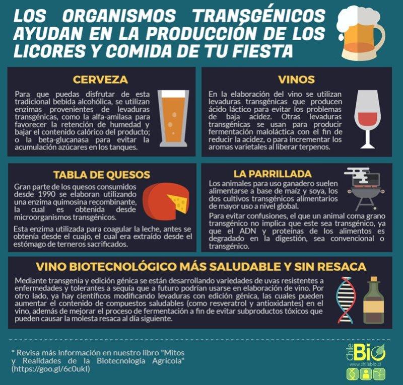 Transgfiesta