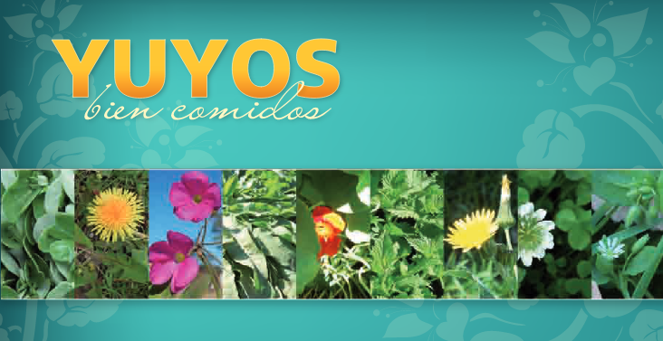 yuyosbiencomidos