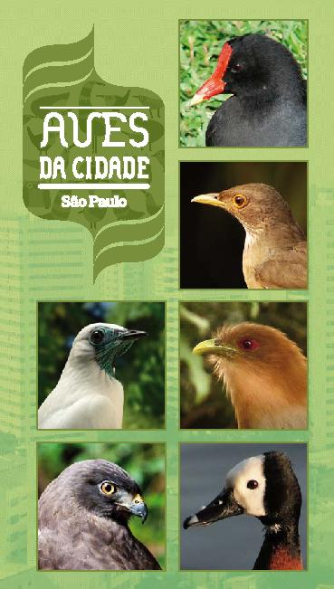 aves_1356099315